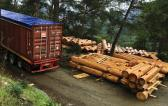 Zero Time Services Transport Ironwood from Russia to Cyprus