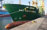 Al Bader Shipping Handles Breakbulk Cargo on Chartered Vessel