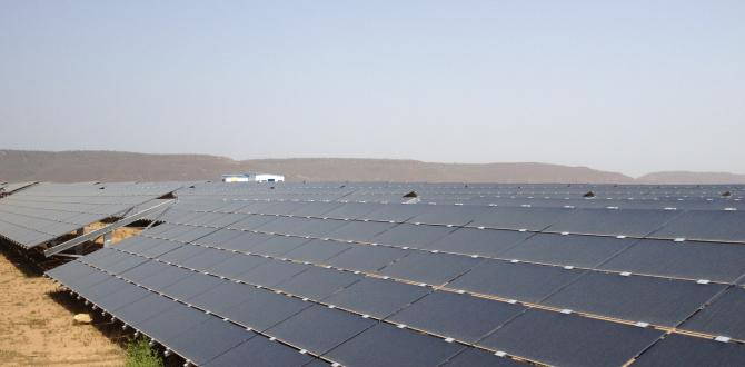 Express Global Logistics Contributing to a Green India with Solar Projects