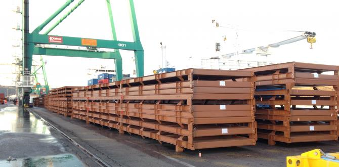 Global Cargo Line Handle Bulk Cargo to Conakry