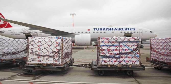 Premier Global Logistics with Urgent Air Shipment to France